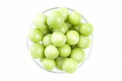 Greengages Stock Image