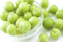 Greengages Royalty Free Stock Photo