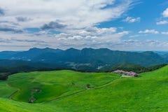 Greengrass på den Soni platån, Nara Prefecture, Japan Royaltyfri Bild