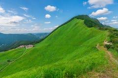 Greengrass på den Soni platån, Nara Prefecture, Japan Royaltyfria Bilder
