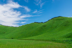 Greengrass at Soni plateau,Nara Prefecture ,Japan. Greengrass against blue sky at Soni plateau,Nara Prefecture,Japan royalty free stock photos