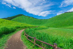Greengrass at Soni plateau,Nara Prefecture ,Japan. Greengrass against blue sky at Soni plateau,Nara Prefecture,Japan royalty free stock photography