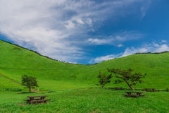 Greengrass at Soni plateau,Nara Prefecture ,Japan. Greengrass against blue sky at Soni plateau,Nara Prefecture,Japan stock images