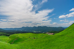 Greengrass at Soni plateau,Nara Prefecture ,Japan. Greengrass against blue sky at Soni plateau,Nara Prefecture,Japan royalty free stock image