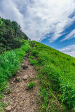 Greengrass at Soni plateau,Nara Prefecture ,Japan Stock Image