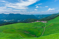 Greengrass at Soni plateau,Nara Prefecture ,Japan. Greengrass against blue sky at Soni plateau,Nara Prefecture,Japan stock photos