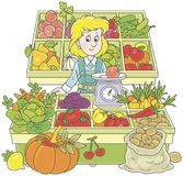 Greengrocer in a market. Smiling girl trader standing behind her counter surrounded by vegetables and fruit, a vector illustration in a cartoon style Stock Photos