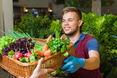 Greengrocer preparing agricultural product Stock Images
