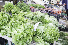 Greengrocers περιοχής μαρουλιού Στοκ Φωτογραφία