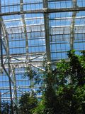 A Greenhouse's View of the Sky – 1. This photo was taken from the green house in Meijer�s Garden located in Grand Rapids, Michigan royalty free stock photos