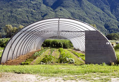 Free Greenhouse Stock Images - 10314114
