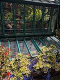 greenhouse Photos stock