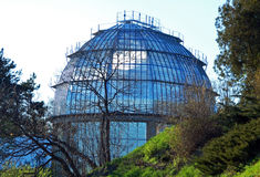 Greenhouse. Large glass greenhouse in the botanical garden Stock Images