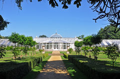 The Greenhouse Royalty Free Stock Image