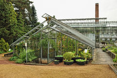 Big greenhouse royalty free stock photos