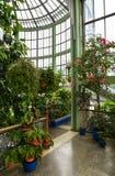 greenhouse Image libre de droits