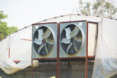 Greenhouse Air Circulation and Ventilation. Agriculture / Greenhouse Air Circulation and Ventilation Stock Photography