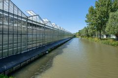A greenhouse along a canal in Westland,in the Netherlands. Commercial glass greenhouses in Westland. Westland is a region in of the Netherlands. It lies in the Stock Photography