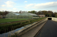Greenhouse And Tunnel Stock Image