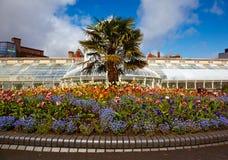 Belfast Botanic Gardens. Greenhouse in the Belfast Botanic Gardens, Northern Ireland stock image