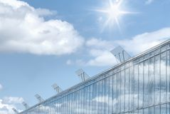 Greenhouse with blue sky and sun flare. Stock Photo