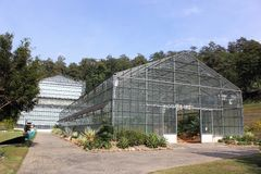 Greenhouse in Botanical Gardens. Big Greenhouse in Botanical Gardens Stock Photography