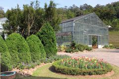 Greenhouse in Botanical Gardens. With small group of flower Stock Images