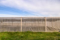 Greenhouse building for cultivated vegetables with blue sky. In plantation land royalty free stock image