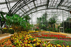 Greenhouse_C Royalty Free Stock Photography