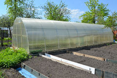 The greenhouse from cellular polycarbonate on a country section Royalty Free Stock Photography