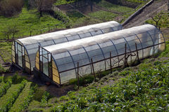 Greenhouse for the cultivation of salad. Small greenhouse for growing salad Royalty Free Stock Photos