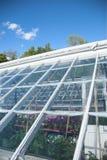 Greenhouse Detail Stock Photo
