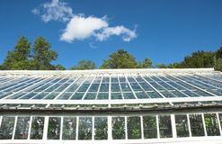 Greenhouse Detail Royalty Free Stock Photography