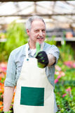 Greenhouse employee thumbs up Royalty Free Stock Photography