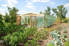 Greenhouse exterior Royalty Free Stock Photos