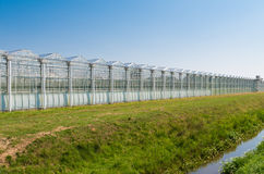 Greenhouse exterior Stock Images