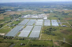 Greenhouse farm from birds view. With many greenhouses in Lithuania Royalty Free Stock Images