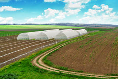 Greenhouse farming, cultivated landscape with arable soil Royalty Free Stock Photography
