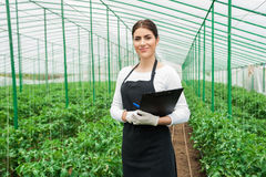 Greenhouse female inspector Royalty Free Stock Photo
