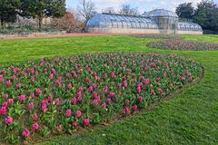 Greenhouse and floral composition in the park. The Parc de la Tete d`Or in Lyon is a large urban park with an area of approximately 117 hectares. The park Stock Photography