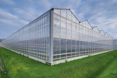 Greenhouse Royalty Free Stock Image
