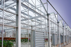 Greenhouse for flowers Stock Photos