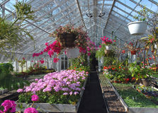 Greenhouse for flowers royalty free stock photo