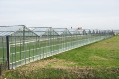 Greenhouse. Frontage of a Greenhouse in 'het Westland', the Netherlands Stock Images