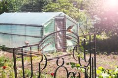 Greenhouse in the garden. Garden near the house royalty free stock photography