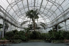 Greenhouse in Glasgow. Stock Image