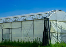 Greenhouse for growing fruit and vegetables Royalty Free Stock Images