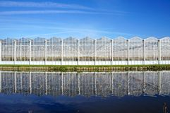 Greenhouse in the Netherlands. A greenhouse for growing plants near the villages of Delfgauw and Pijnacker in the Netherlands stock image
