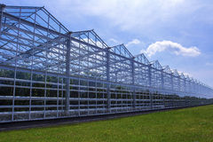 Greenhouse. The greenhouse for growing vegetables. All around the sky and grass Stock Images
