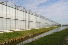 Greenhouse in Holland Stock Photo